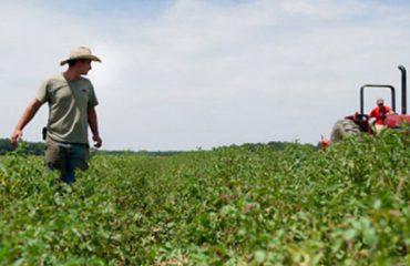 Се укинува условот, земјоделците да ги подмират обврските кон УЈП за да добијат субвенции