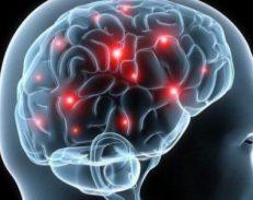 Ja ilaçi i mrekullisë për trurin