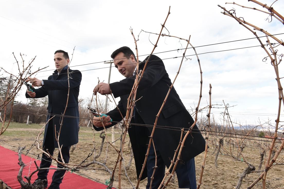 Премиерот Заев на закројување на лозјата во Лепово  Ги охрабрувам земјоделците да сметаат на партнерството во Владата