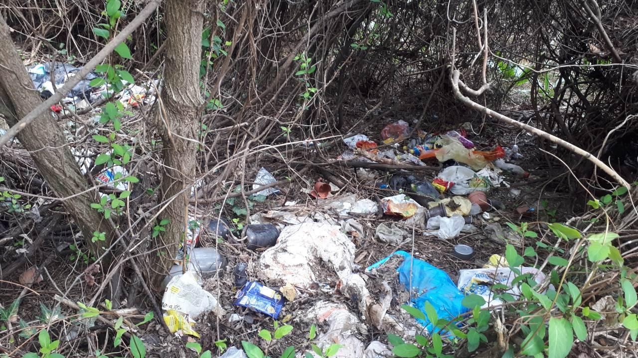 Студентите се дават во ѓубре и кај ПМФ