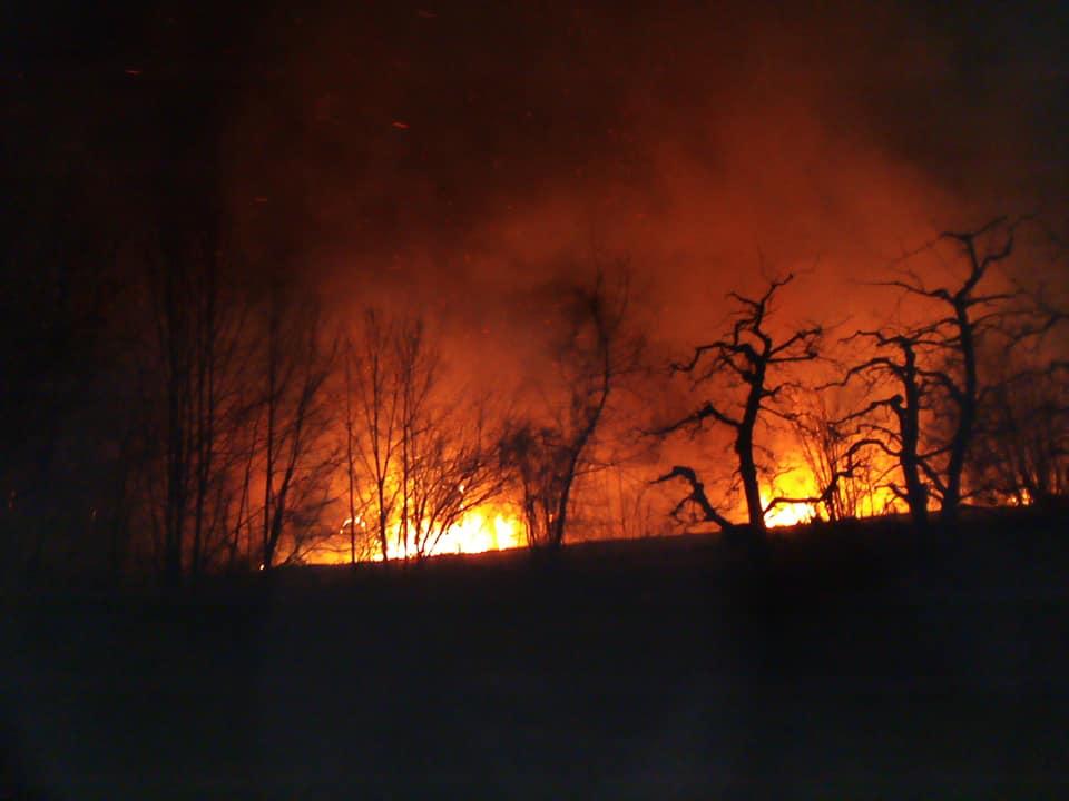Локализиран пожарот во близина на Асамати