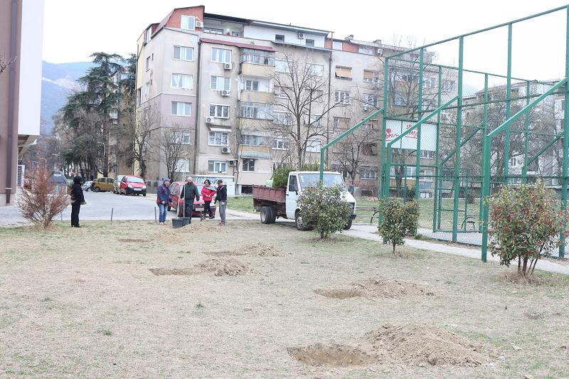 Се садат 67 дрвја во Кисела Вода